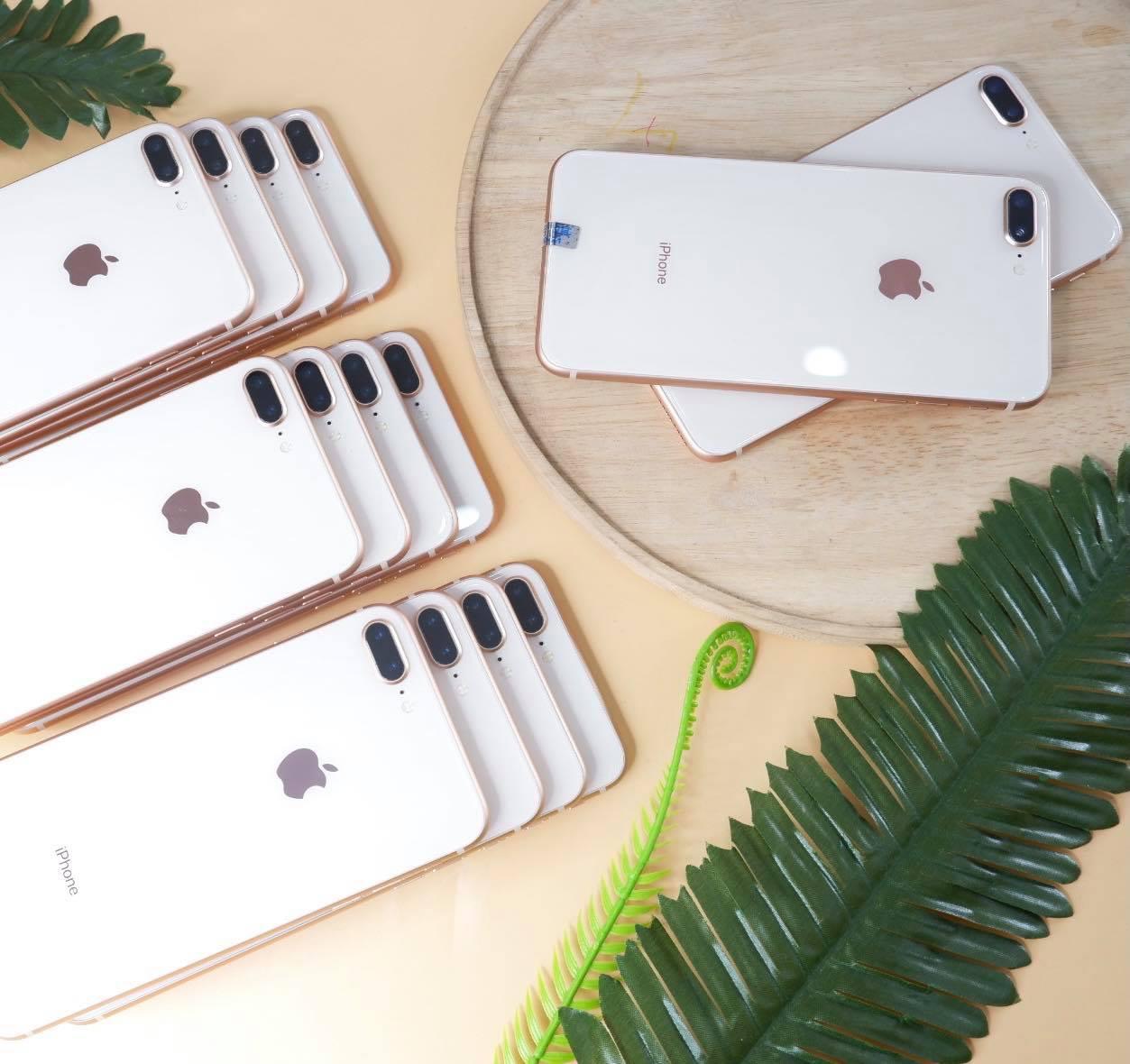 Những Chiếc iPhone Vẫn Được Săn Đón Năm 2021